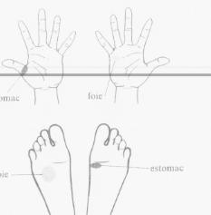 Réflexothérapie du foie